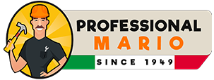 Professional Mario